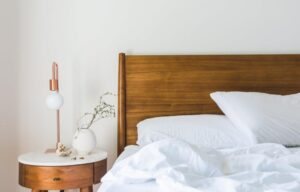 Denver Bed Bug Heat Treatments Extermination